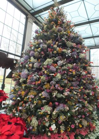 Winterthur, DE: dried flower tree in conservatory
