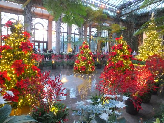 Dancing Fountains Picture Of Longwood Gardens Kennett Square Tripadvisor