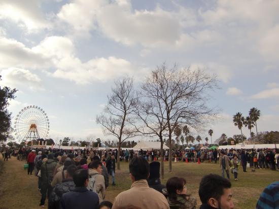 Ako Kaihin Park: 会場