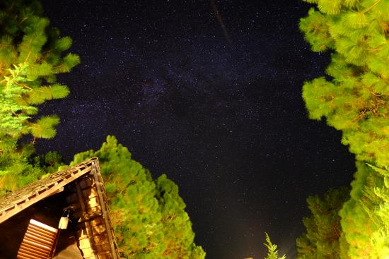 Galyani Vadhana, Thailand: แสงดาวยามค่ำคืน