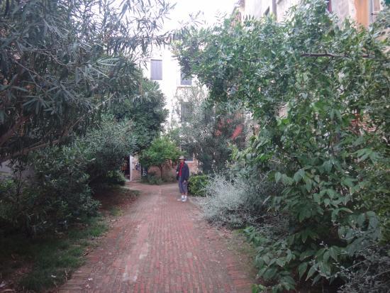 B&B Casa Baseggio: Front courtyard