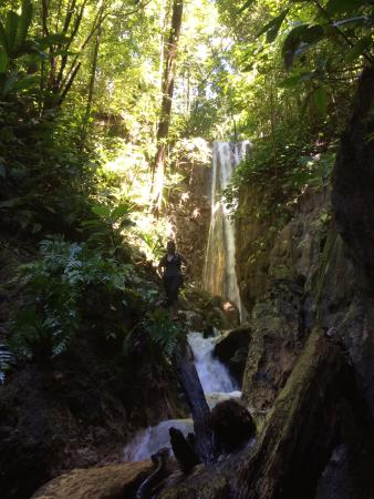 El Remanso Lodge: Waterfall