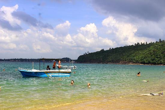 Jungle Beach: beach1