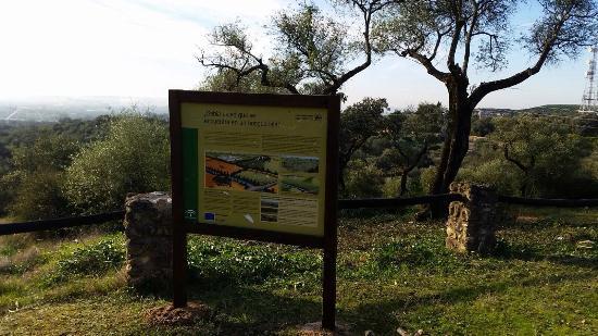 Parque Periurbano Los Cabezos: Los Cabezos