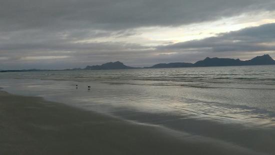 Puriri Bay (Whangaruru North Head) Campsite - Whangaruru