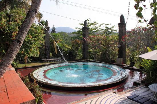 Shankari's Bali Retreat: Kolam renang