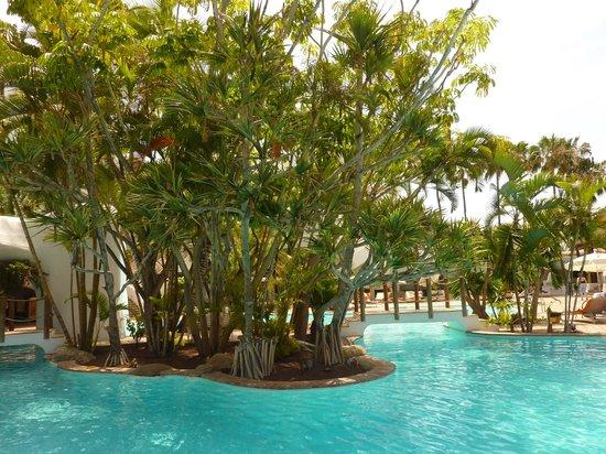 Swimming pool picture of hotel jardin tropical costa for Jardin tropical