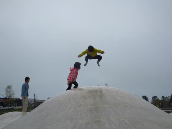 Yakumo-cho, اليابان: ふわふわドーム