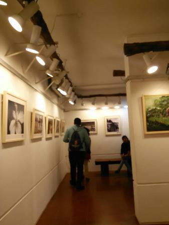 gallery  picture of drik gallery, dhaka city  tripadvisor, Beautiful flower