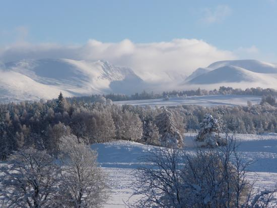 Badenoch and Strathspey, UK: Deep Winter in the Cairngorms National Park