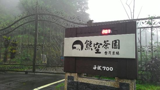 Xiong Kong Tea Plantation