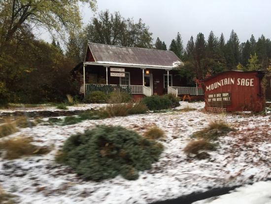 Mountain Sage Cafe: photo0.jpg