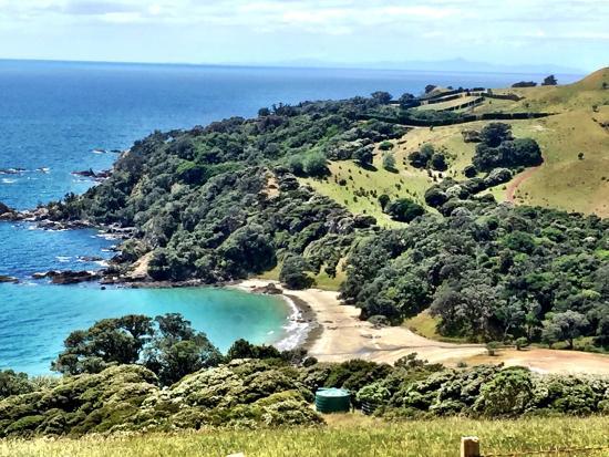 Waiheke Island, New Zealand: photo7.jpg