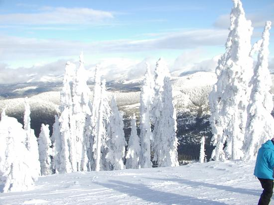 Chewelah, WA: Daylight Snow Ghosts