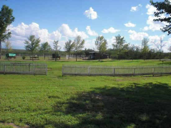 Douglas, AZ: Green land