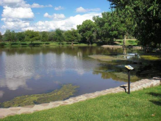 Douglas, AZ: Pond