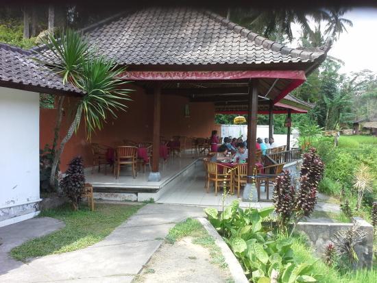 Lokasi cafe dewi dekat areal persawahan tegalalang ubud for Tegalalang rice terrace ubud