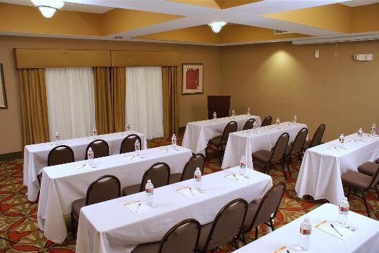 La Quinta Inn & Suites Houston East at Normandy: Meeting Room