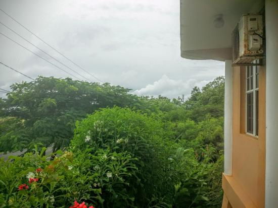 La Heliconia: View from the apartment