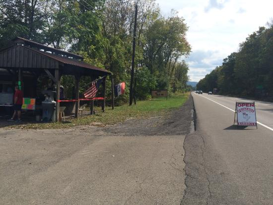 Montour Falls, NY: Bbq stand