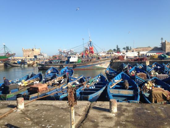 L'Etoile de Mogador : Fischerboote im Hafen von Essaouira