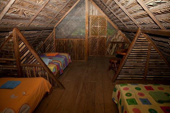 Limoncocha, เอกวาดอร์: Habitaciones simples, dobles, generales, matrimonial