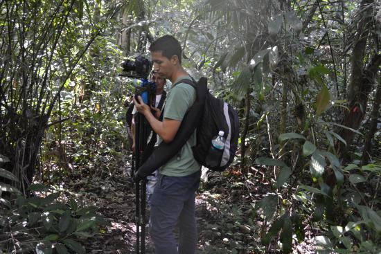 Limoncocha, เอกวาดอร์: Tour caminatas