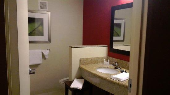 Courtyard Newport News Airport: The bathroom