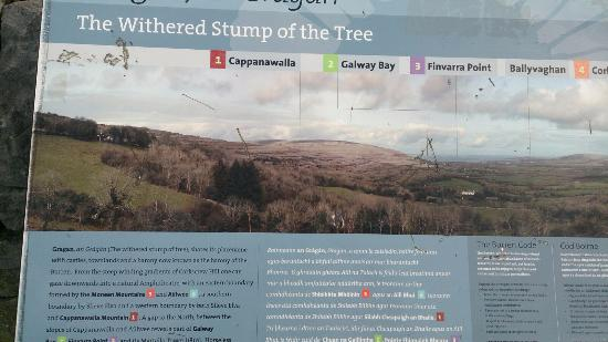 Corofin, Irland: Infotafel am Gragan (The Whithered Stump of the Tree)