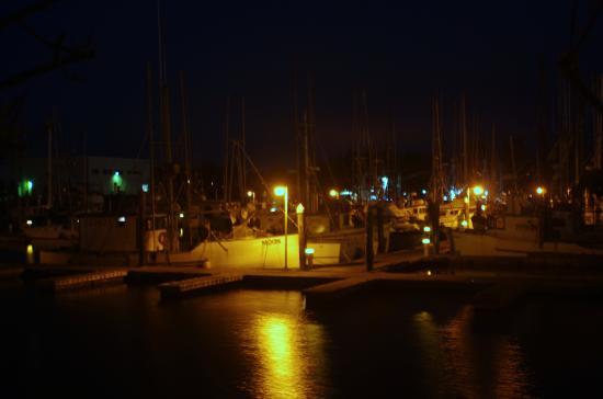 Charleston, OR: North Dock
