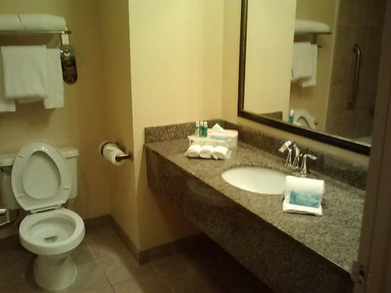 Holiday Inn Express Orlando Airport: toilet and sink area