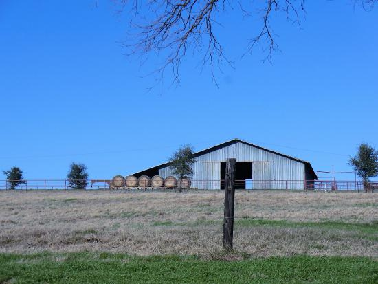 Seagoville, TX: working ranch