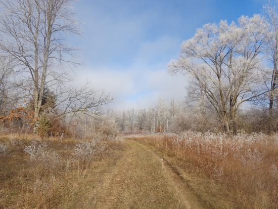 Grass Lake, MI: Early December morning on the trail