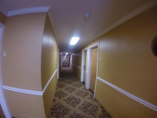 San Mateo SFO Airport Hotel: Hallway