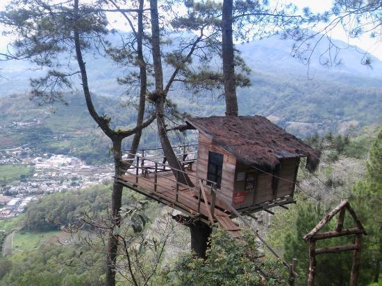 Paralayang Batu: Rumah Kayu (tree house)