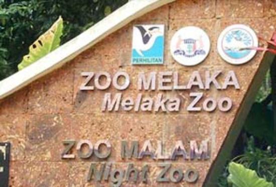 Malacca Zoo Melaka Malaysia Top Tips Before You Go with