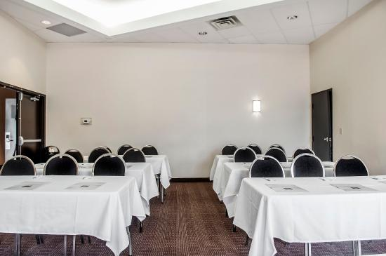 Comfort Hotel Airport North: Meeting