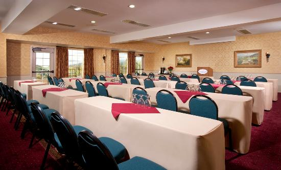 Ayres Suites Mission Viejo: MVMeeting Web
