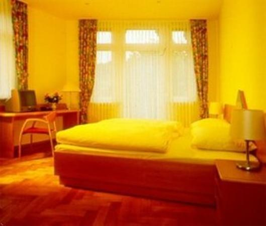 Hotel Schiller Freiburg : Guest Room