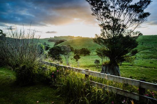 Kaeo, Neuseeland: Blick aus dem Zimmer