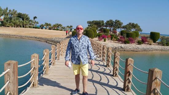 Sheraton Miramar Resort El Gouna: 20151224_103535_large.jpg