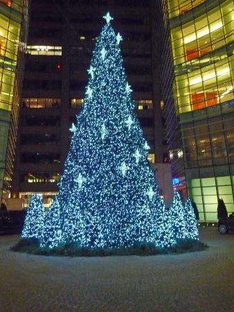 Christmas Tree Outside Le Cirque