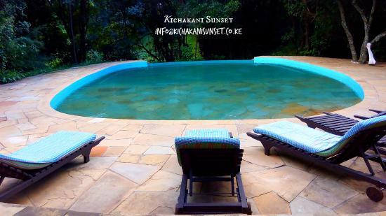 Sekenani Camp: swimming pool