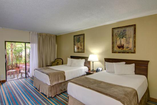 Boca Raton Plaza Hotel and Suites: Majesty Double