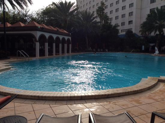 Renaissance Orlando Resort at SeaWorld: Pool