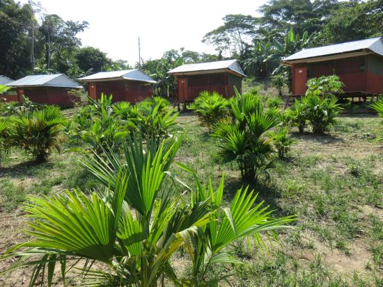 Maniti Camp Expeditions: Bungalows