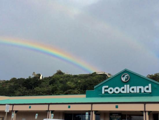 Ahi Poke - Picture of Foodland, Haleiwa - TripAdvisor