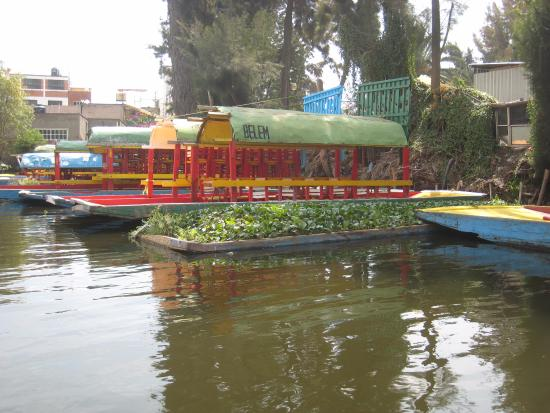 Floating Gardens of Xochimilco: A mini floating garden