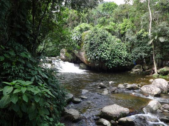 Poço do Tarzan