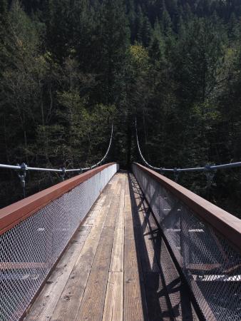 Newhalem Visitor Center: Suspension Bridge